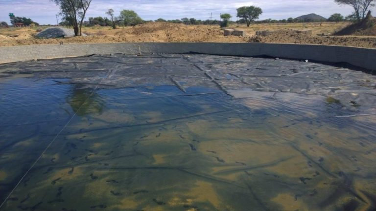 poolcovers_namibia_ponds0004